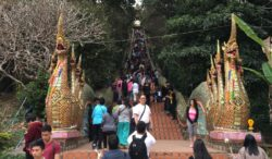 Naga Protecting Directions Wat Phrathat Doi Suthep, Chiang Mai, Thailand
