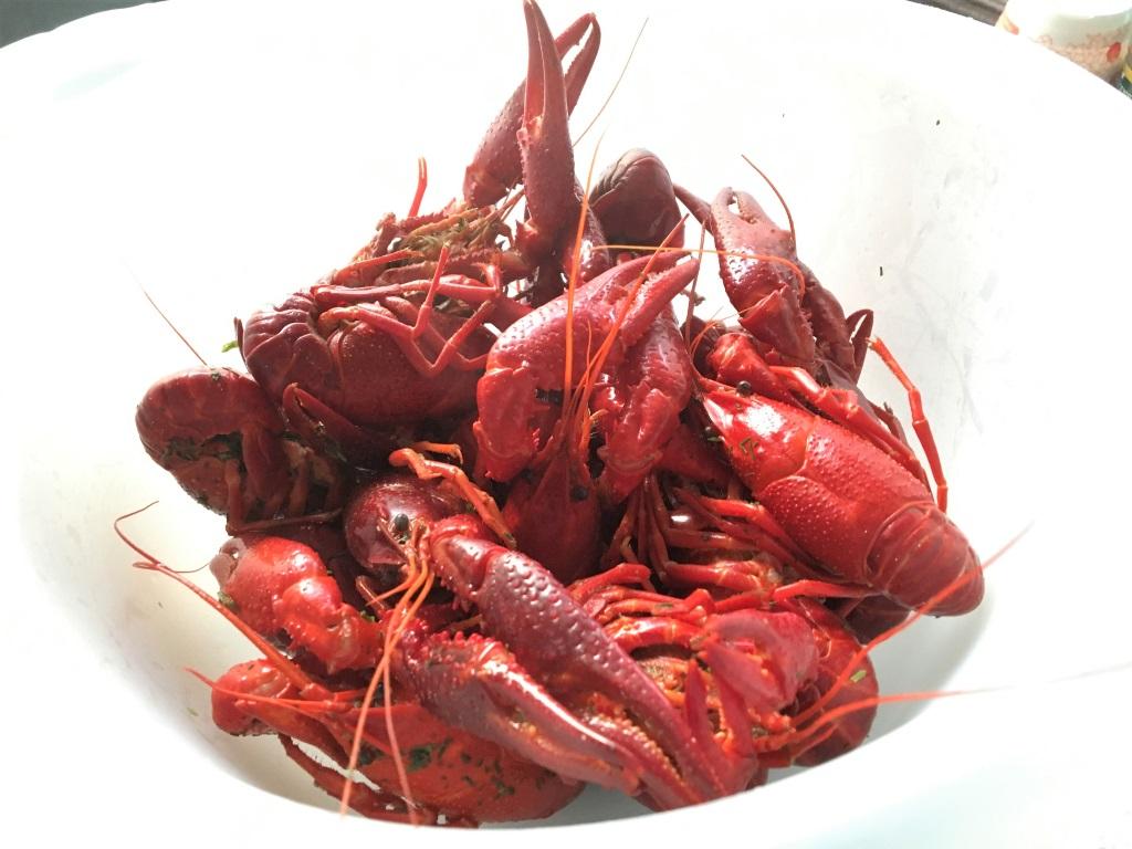 Crayfish Boil, Eskilstuna, Sweden