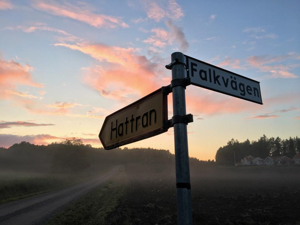 Foggy Evening on the way to Hattran, Eskilstuna, Sweden
